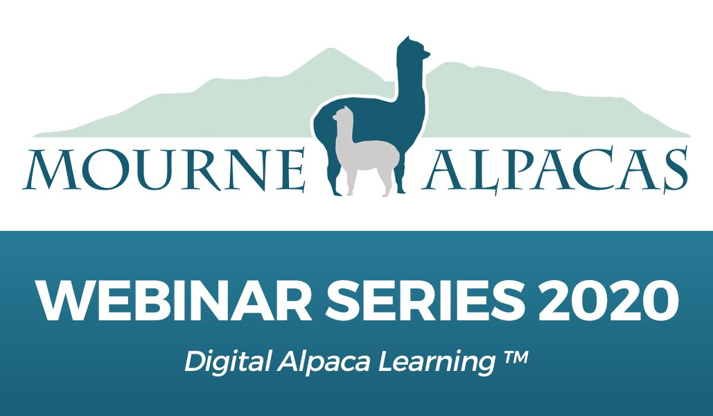 """In Therapy – Working With Alpacas And Llamas In Animal Assisted Interventions."""